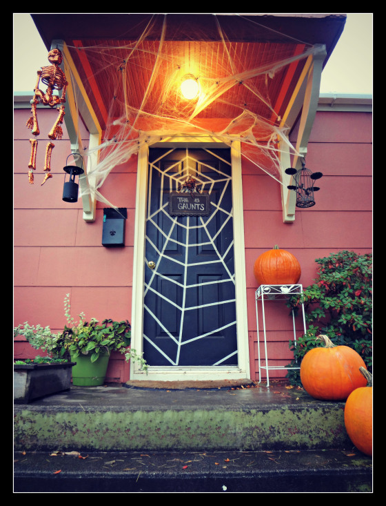 Spider web door