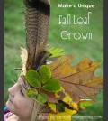feature-pic-fall-leaf-crown